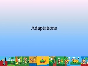 Adaptations How do adaptations help animals survive in