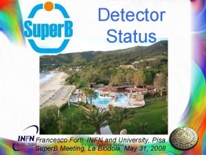 Detector Status Francesco Forti INFN and University Pisa