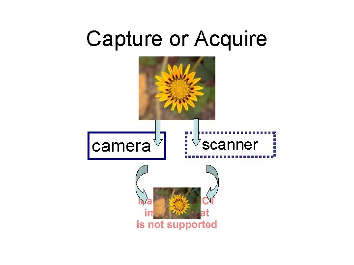 Capture or Acquire camera scanner Capture Sunlight reflecting