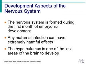 Development Aspects of the Nervous System The nervous