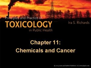Chapter 11 Chemicals and Cancer Chemicals and Cancer