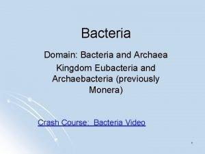 Bacteria Domain Bacteria and Archaea Kingdom Eubacteria and