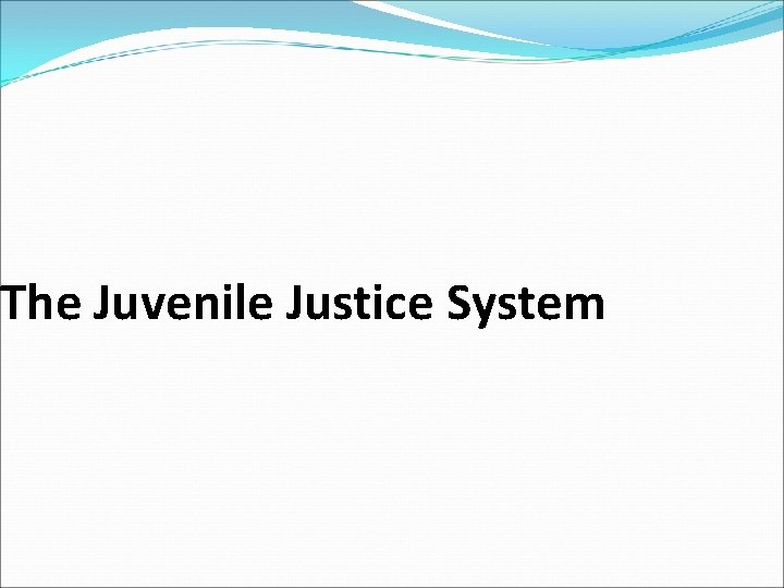 The Juvenile Justice System The Juvenile Justice System