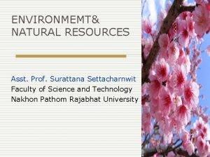 ENVIRONMEMT NATURAL RESOURCES Asst Prof Surattana Settacharnwit Faculty