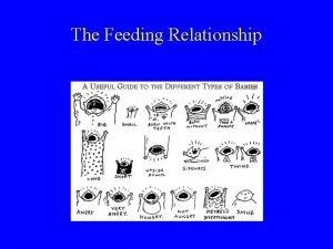 The Feeding Relationship The feeding relationship Nourishing and