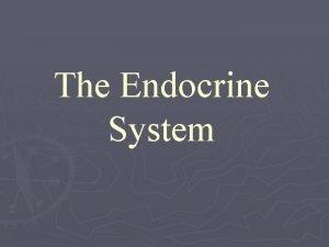 The Endocrine System The Endocrine System are the
