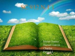 SC 912 N 1 1 Bryan Suarez Hansel