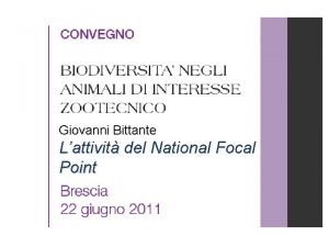 Giovanni Bittante Lattivit del National Focal Point After