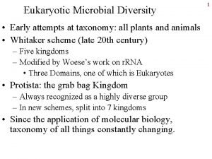 Eukaryotic Microbial Diversity Early attempts at taxonomy all