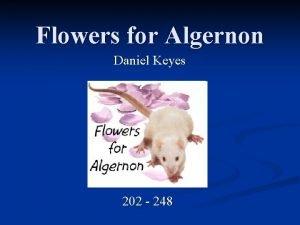 Flowers for Algernon Daniel Keyes 202 248 Meet