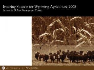 Livestock Insurance Overview Livestock Risk Protection feeder cattle