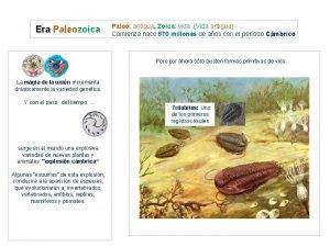 Era Paleozoica Paleo antigua Zoica vida Vida antigua