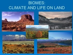 BIOMES CLIMATE AND LIFE ON LAND BIOMES CLIMATE