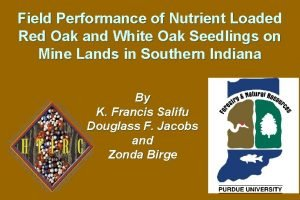 Field Performance of Nutrient Loaded Red Oak and