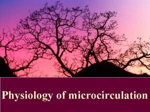 Physiology of microcirculation Microcirculation The microcirculation is the