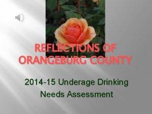 REFLECTIONS OF ORANGEBURG COUNTY 2014 15 Underage Drinking