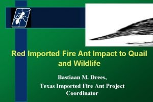 Red Imported Fire Ant Impact to Quail and