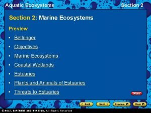 Aquatic Ecosystems Section 2 Marine Ecosystems Preview Bellringer