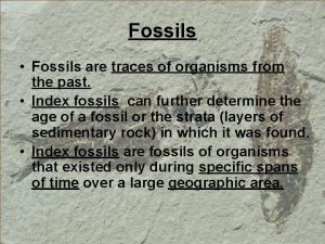 Fossils Fossils are traces of organisms from the