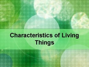 Characteristics of Living Things Living Things Share the