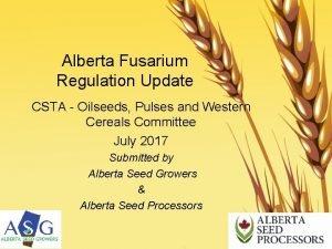Alberta Fusarium Regulation Update CSTA Oilseeds Pulses and