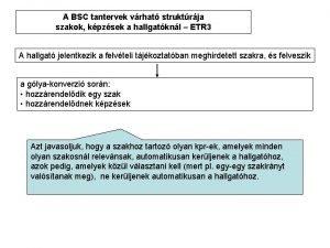 A BSC tantervek vrhat struktrja szakok kpzsek a