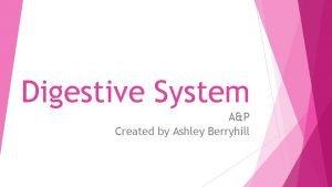 Digestive System AP Created by Ashley Berryhill Digestive