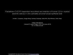 FractalkineCX 3 CR 1 dependent recruitment and retention