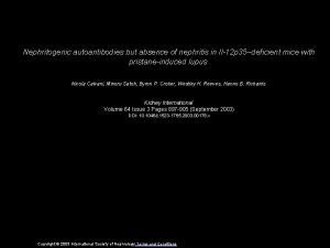 Nephritogenic autoantibodies but absence of nephritis in Il12