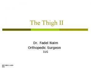 The Thigh II Dr Fadel Naim Orthopedic Surgeon
