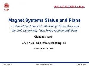 BNL FNAL LBNL SLAC Magnet Systems Status and