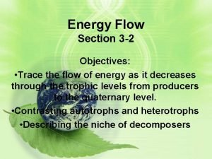 Energy Flow Section 3 2 Objectives Trace the