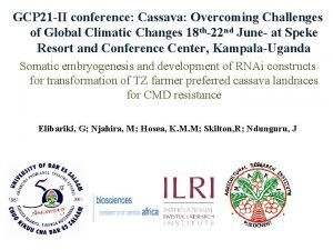 GCP 21 II conference Cassava Overcoming Challenges of