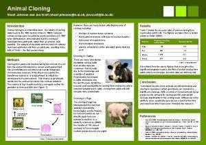 Animal Cloning Stuart Johnson and Jon Scott stuart