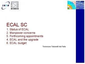 ECAL SC 1 Status of ECAL 2 Manpower