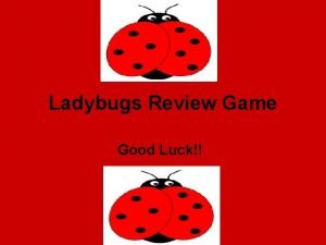 Ladybugs Review Game Good Luck True or False