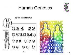 Human Genetics 9102020 1 1 Human Genetics 2