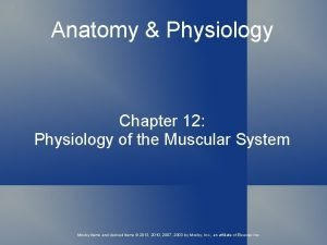 Anatomy Physiology Chapter 12 Physiology of the Muscular