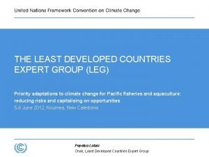 THE LEAST DEVELOPED COUNTRIES EXPERT GROUP LEG Priority