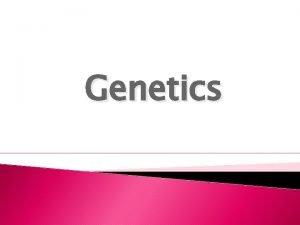 Genetics Word GENE ALLELE HOMOZYGOUS or Purebred Vocabulary