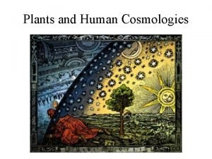 Plants and Human Cosmologies Areas where special plants