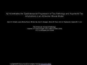 A Accelerates the Spatiotemporal Progression of Tau Pathology