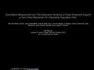 Quantitative Measurement and Thermodynamic Modeling of Fused Enhancers