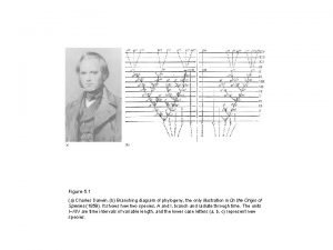 Figure 5 1 a Charles Darwin b Branching