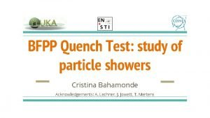 BFPP Quench Test study of particle showers Cristina