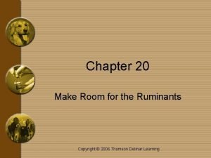 Chapter 20 Make Room for the Ruminants Copyright
