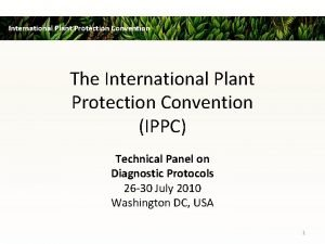 International Plant Protection Convention The International Plant Protection