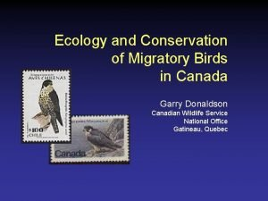 Ecology and Conservation of Migratory Birds in Canada