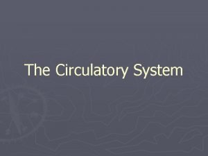 The Circulatory System An Overview of the Circulatory