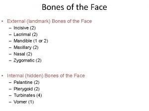 Bones of the Face External landmark Bones of